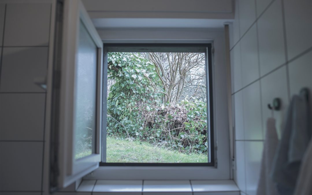 Single Glazing vs Double Glazing Explained